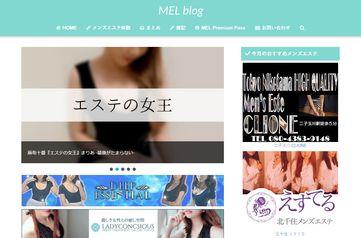 MEL blog