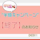 【ぽちゃ専.com】掲載料金「半額キャンペーン」終了のお知らせ。