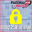 【風俗ウォッチ】常時SSL化と新機能(今ヒメ)リリース!