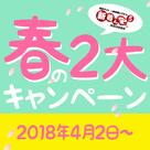 【新着ん】春の2大キャンペーン ~特別キャンペーン&オフィシャルHP対応キャンペーンについて~